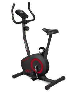 Healthmate Magnetic Bike (HSM-B100T) pictures & photos