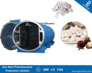 Commercial Vacuum Freeze Drying Machine for Dragon Fruit pictures & photos