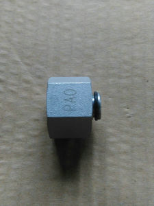 Machine Precision Female Seal Part Fittings pictures & photos