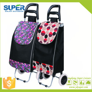 Foldable 2 Wheel Trolley (SP-542) pictures & photos