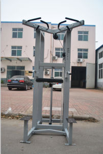 Fitness Equipment / Gym Equipment / Life Fitness Equipment / Assisted Chin up/DIP (SS09) pictures & photos