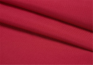 320t Coated Nylon Taslan Fabric for Garment pictures & photos