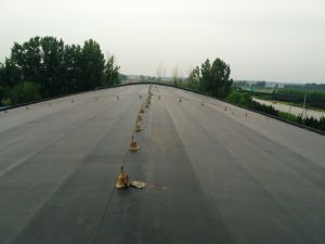 1.2-2.0mm EPDM Rubber Roofing Waterproofing Membrane pictures & photos