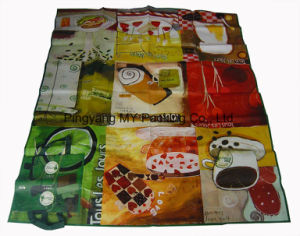 Print Travelling Beach Mat PP Woven Picnic Mat pictures & photos