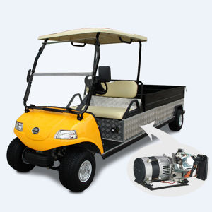 Hybrid Generator Electric Utility Car/Cart/Buggy/Utility Car pictures & photos