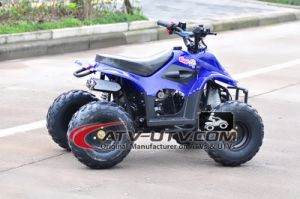 Hot Selling Stable Quality 50cc Quad Bike ATV pictures & photos