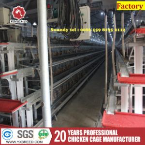 Full Automatic Battery Bird Cages in Poultry Farms pictures & photos