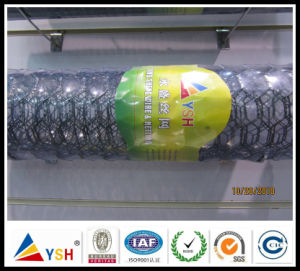 Hexagonal Wire Mesh Factory (ISO9001: 2008quality)