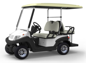 Utility Vehicles Based Golf Cart with Rear Jumper Seat pictures & photos