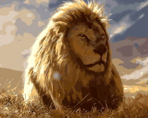 Wall Art Hot Lion Photo DIY Digital Painting by Numbers for Living Room Decor pictures & photos