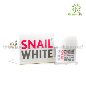 China Snail Cream Face Care Skin Treatment Reduce Scars Acne Pimples ...