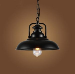 Metallic Loft Pendant Lamp (WHP-2053) pictures & photos