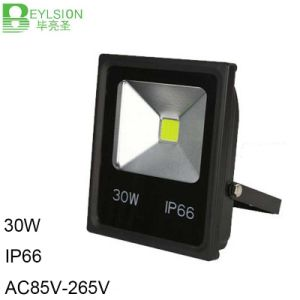 30W IP66 LED Flood Light Outdoor Light