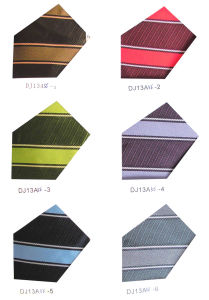 Lastest Designs for Neckties Year of 2014 pictures & photos