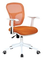 Modern Premium Office Executive or Conference Chair (PS-NL-137) pictures & photos