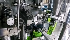 Automatic Rice Weighing and Filling Packing Machine pictures & photos