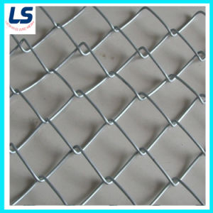 Resistant to Rust Hot-Dipped Galvanized Chain Link Fence