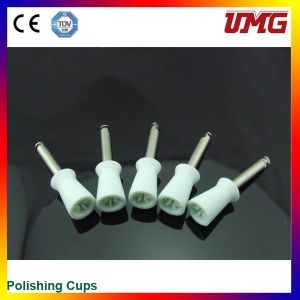 Disposable Dental Prophy Cup, Dental Instrument pictures & photos