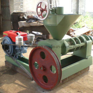 6yl-165 Larger Peanut Oil Press Machine pictures & photos