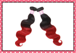 Wholesale Price Ombre Color Brazilian Human Hair Body Wave 16inches pictures & photos