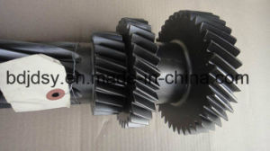 High Strength Double Row Gear pictures & photos