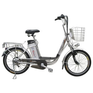 Electric Bike (EB08-20)