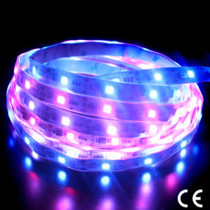 Waterproof Dream Color Side Emitting Flexible SMD335 LED Strip pictures & photos