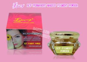 China Permanent Makeup Pigment Powder