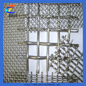 Woven Crimped Wire Mesh pictures & photos