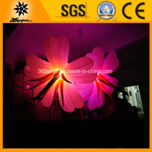 Big Factory Outlet Inflatable LED Lighting Flowers
