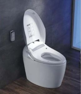 Hot Selling PP/Ceramic Boday Intelligent Toilet (W1504) pictures & photos