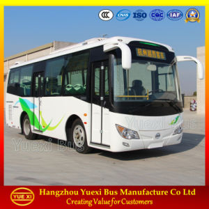 Cheap 8 - 10 Meter City Bus