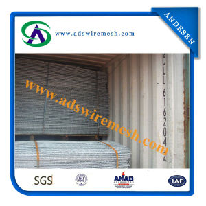 Best Selling Welded Wire Mesh for Building (Hot sale & factory price) pictures & photos
