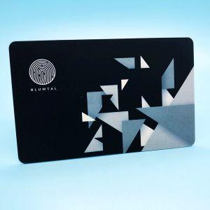 Visa Master card protection RFID blocking wallet card