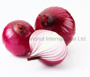 Hot Sell Fresh Crop Red Onion; Hot Sell Fresh Onion pictures & photos