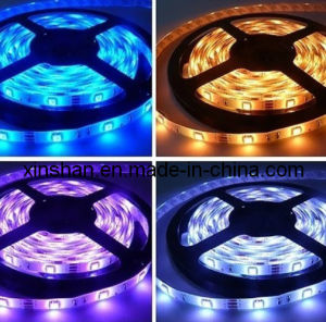 CE LED Strip Light (SX-5050R60R-W12)