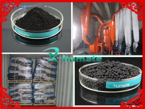 Humic Amino Acid with NPK Organic Fertilizer Granular 2-4mm pictures & photos