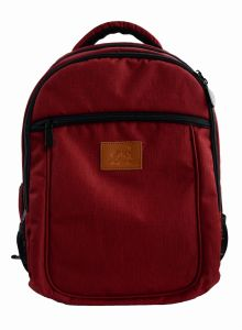 Casual Laptop Backpack Notebook Bag School Bag (SB6420) pictures & photos