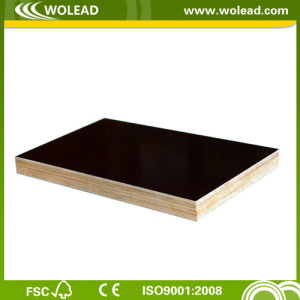 Brownfilm Faced Waterproof Shutter Concrete Plywood (w15306)