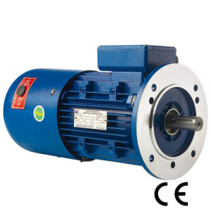0.75kw Asynchronous Three Phase Brake Motor