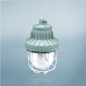 Explosion Proof Lamp for Hazard Zone