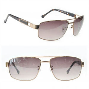 2013 New Style Sunglasses/ Fashion Sunglasses pictures & photos