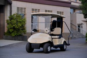 Dongfeng Motor Best Electric Go Cart Golf Cart with Caddie Stand Secure Hand