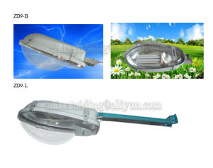 Energy Saving Lighting Bulbs & Tube Street Lighting E27/E40 pictures & photos