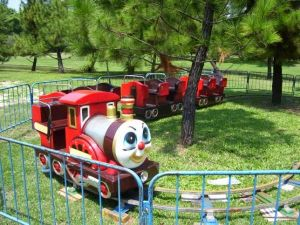 CE Approved! ! ! Amusement Park Kidde Ride Trains pictures & photos