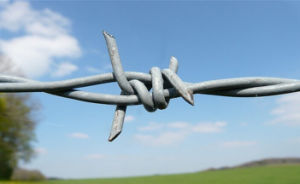 High Corrision Resistance Barbed Protection Wire pictures & photos