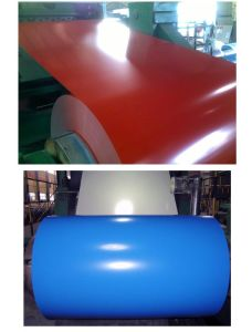 Prepainted, Coated Steel Coil for Industry