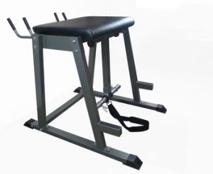 Body Fitness Equipment /Glute Ham Develop/Fitness Equipment Bench/Reverse Hyper pictures & photos