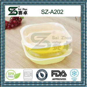 800ml 2 Compartment Ecofriendly Disposable Plastic Take Away Bento Box pictures & photos