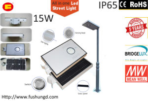 15W Integrated Solar LED Street Light with Garden